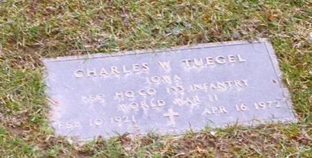 TUEGEL, CHARLES - Dubuque County, Iowa | CHARLES TUEGEL