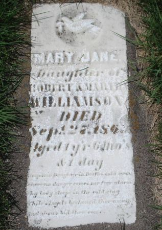 WILLIAMSON, MARY JANE - Dubuque County, Iowa | MARY JANE WILLIAMSON