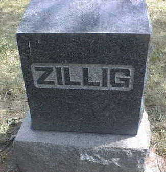 ZILLIG, FAMILY - Dubuque County, Iowa | FAMILY ZILLIG