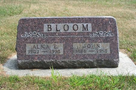 TAYLOR BLOOM, ALMA ETTA - Fayette County, Iowa | ALMA ETTA TAYLOR BLOOM