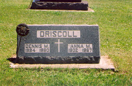 DRISCOLL, DENNIS MICHAEL - Fayette County, Iowa | DENNIS MICHAEL DRISCOLL