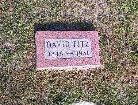 FITZ, DAVID - Greene County, Iowa | DAVID FITZ