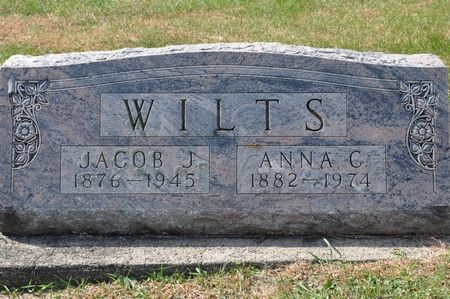 WILTS, ANNA C. - Grundy County, Iowa | ANNA C. WILTS