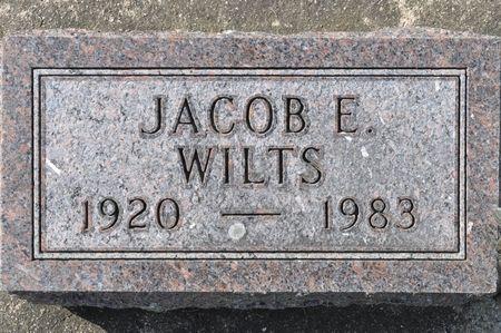 WILTS, JACOB E. - Grundy County, Iowa | JACOB E. WILTS