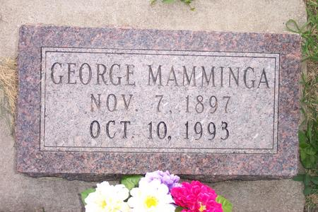 MAMMINGA, GEORGE - Hamilton County, Iowa | GEORGE MAMMINGA