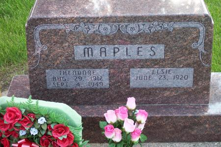 MAPLES, THEODORE - Hamilton County, Iowa | THEODORE MAPLES