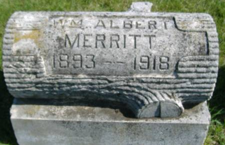 MERRITT, WILLIAM ALBERT - Hamilton County, Iowa | WILLIAM ALBERT MERRITT