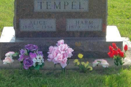 TEMPEL, ALICE - Hamilton County, Iowa | ALICE TEMPEL