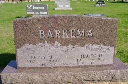 BARKEMA, HAUKO D - Hancock County, Iowa | HAUKO D BARKEMA