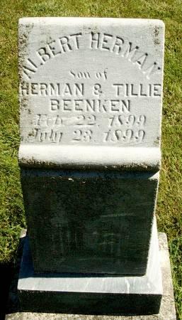 BEENKEN, ALBERT H - Hancock County, Iowa | ALBERT H BEENKEN