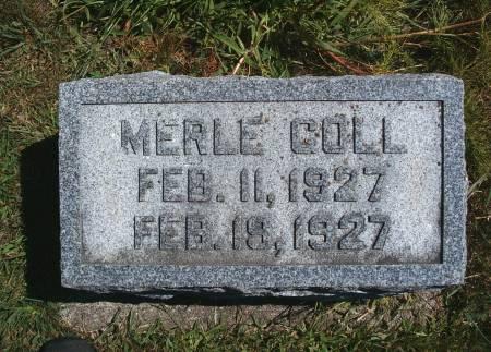 GOLL, MERLE - Hancock County, Iowa | MERLE GOLL