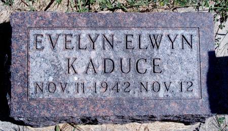 KADUCE, EVELYN E - Hancock County, Iowa | EVELYN E KADUCE