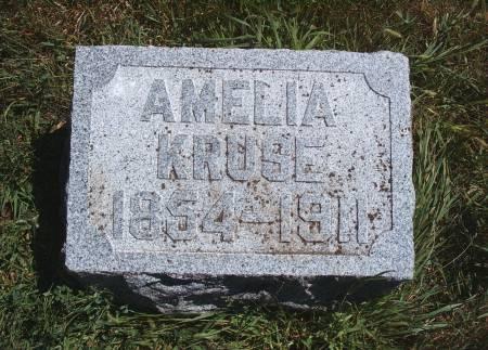 KRUSE, AMELIA - Hancock County, Iowa | AMELIA KRUSE