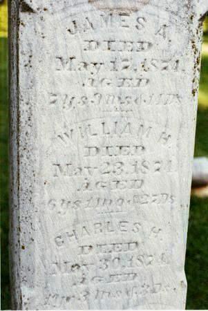 WILSON, WILLIAM H - Hardin County, Iowa | WILLIAM H WILSON