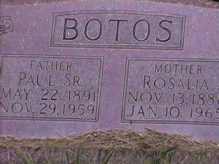 BOTOS, PAUL SR - Harrison County, Iowa | PAUL SR BOTOS