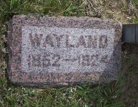 JOHNSON, ALEXANDER WAYLAND - Harrison County, Iowa   ALEXANDER WAYLAND JOHNSON
