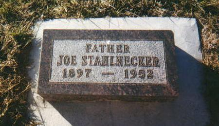 STAHLNECKER, JOE - Harrison County, Iowa | JOE STAHLNECKER