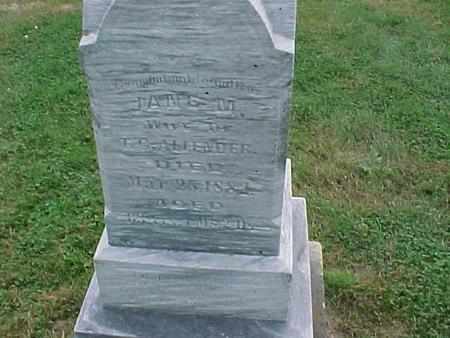 ALLENDER, JANE M. - Henry County, Iowa | JANE M. ALLENDER