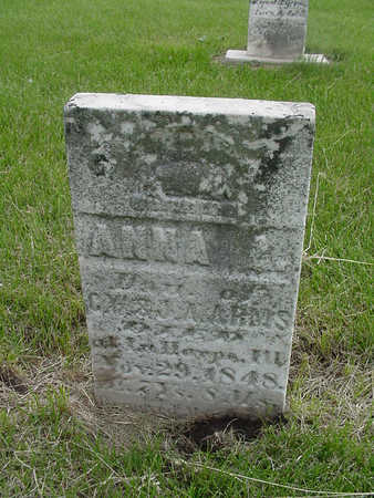 ARMS, ANNA A. - Henry County, Iowa | ANNA A. ARMS