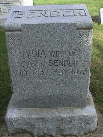 BENDER, LYDIA - Henry County, Iowa | LYDIA BENDER