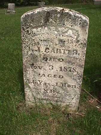 CARTER, MARY A - Henry County, Iowa | MARY A CARTER