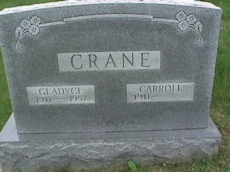 CRANE, CARROLL - Henry County, Iowa | CARROLL CRANE