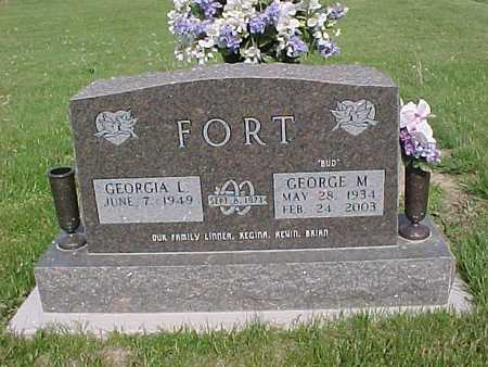 FORT, GEORGE - Henry County, Iowa | GEORGE FORT