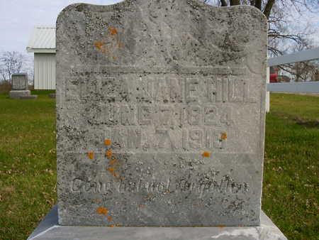 HILL, ELIZA JANE - Henry County, Iowa   ELIZA JANE HILL