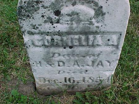 JAY, CORNELIA - Henry County, Iowa | CORNELIA JAY