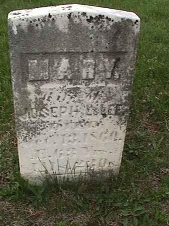 LEE, MARY - Henry County, Iowa | MARY LEE