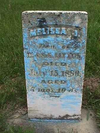 LITTON, MELISSA - Henry County, Iowa | MELISSA LITTON