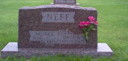 NEFF, DAVID R. - Henry County, Iowa | DAVID R. NEFF
