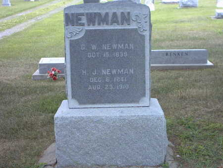 NEWMAN, GEORGE WASHINGTON - Henry County, Iowa | GEORGE WASHINGTON NEWMAN