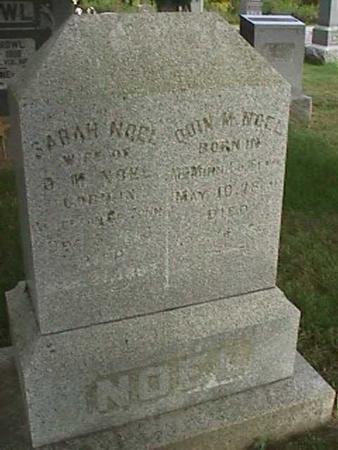 NOEL, QUIN M - Henry County, Iowa | QUIN M NOEL