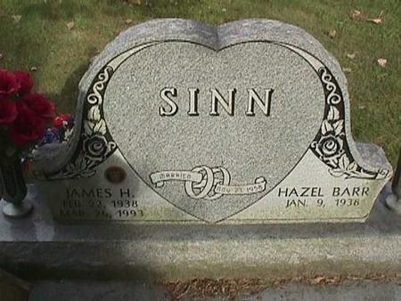 SINN, JAMES H - Henry County, Iowa | JAMES H SINN