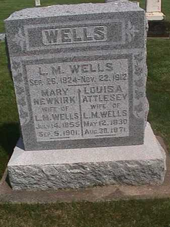 WELLS, L. M. - Henry County, Iowa | L. M. WELLS