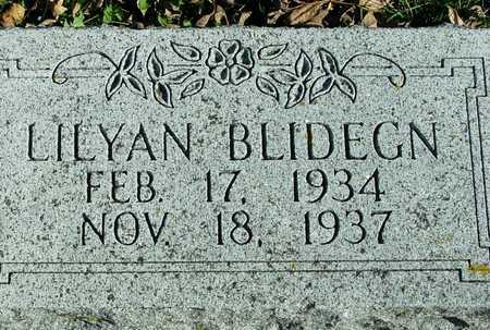 BLIDEGN, LILYAN - Ida County, Iowa   LILYAN BLIDEGN
