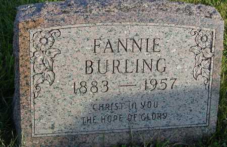 BURLING, FANNIE - Ida County, Iowa | FANNIE BURLING