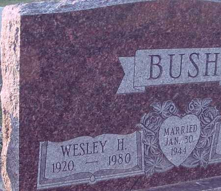 BUSH, WESLEY H. - Ida County, Iowa | WESLEY H. BUSH