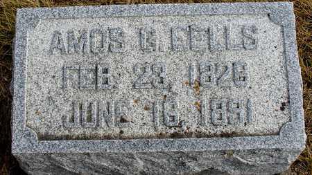 EELLS, AMOS G. - Ida County, Iowa | AMOS G. EELLS