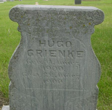 GRIENKE, HUGO - Ida County, Iowa | HUGO GRIENKE