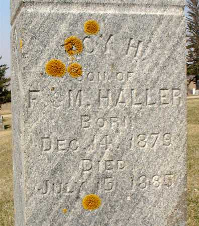 HALLER, ROY H. - Ida County, Iowa | ROY H. HALLER