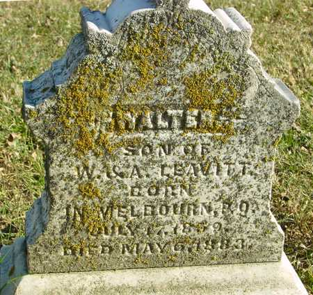 LEAVITT, WALTER - Ida County, Iowa   WALTER LEAVITT