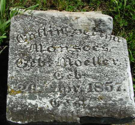 MONSEES, (HIS WIFE) - Ida County, Iowa | (HIS WIFE) MONSEES