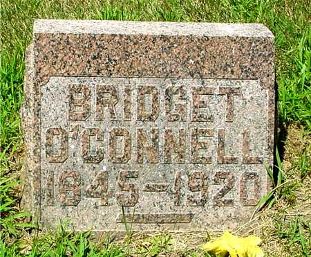 O'CONNELL, BRIDGET - Ida County, Iowa | BRIDGET O'CONNELL
