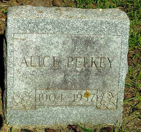 PELKY, ALICE - Ida County, Iowa | ALICE PELKY