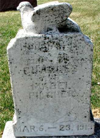 PILCHER, NORMAN C. - Ida County, Iowa | NORMAN C. PILCHER