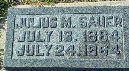 SAUER, JULIUS M. - Ida County, Iowa | JULIUS M. SAUER