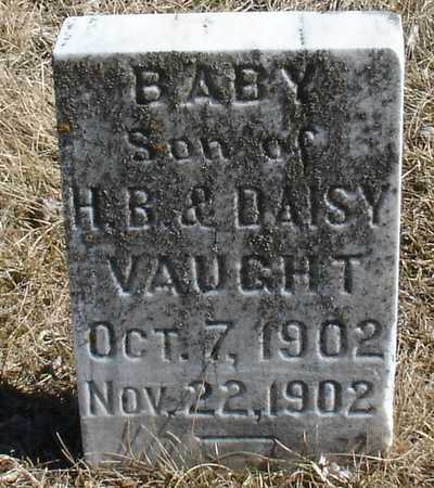 VAUGHT, BABY - Ida County, Iowa | BABY VAUGHT