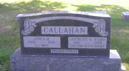 CALLAHAN, JAMES - Iowa County, Iowa | JAMES CALLAHAN